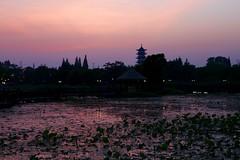 (Arnaud999) Tags: china pagoda asia asie wuzhen watertown chine zhejiang pagode