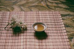 Morning&tea (Natalia_Shavnyova) Tags: morning flowers film analog tea lilac 35mmfilm chinatea