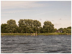 That Summer Feeling (Harry -[ The Travel ]- Marmot) Tags: holland nederland netherlands dutch hollands nl broekinwaterland zmer summer children playing swimming bathing suite nat balanceren balancing act play water lake meer trees bomen landschap landscape olympusomdem5 allrightsreservedcontactmebyflickrmail kids kinderen scholieren zomervakantie
