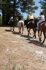 5D_IMG_6546 (Jeroen Kransen) Tags: bulgarije bulgaria    horse horseback equestrian horseriding paardrijden paardrit rodopen rhodopes