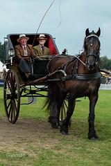 Marienwaerdt 2016 (Gandalfo) Tags: marienwaerdt 2016 fair nl dutch horses paarden coach rijtuig span
