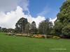 Clyne Gardens 2016 09 30 #10 (Gareth Lovering Photography 3,000,594 views.) Tags: clyne gardens botanical swansea wales flowers trees shrubs park olympus stylus1s garethloveringphotography