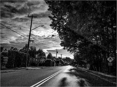 Silvery Festoons (Patricia Colleen) Tags: monochrome 12thavenue tsawwassen thestreetswhereilive street fromthecar