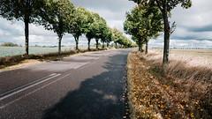 (frollein2007) Tags: brandenburg uckermark herbst