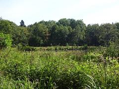 26. Val de Loire (@bodil) Tags: france loiret valdeloire centre paysage landscape