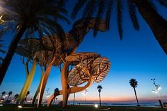 Blue hour in La Pineda (PauliMatze) Tags: lapineda costadorada spain spanien blauestunde bluehour langzeitbelichtung