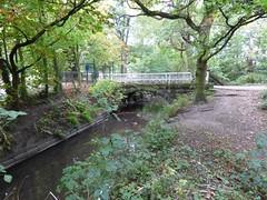 The River Alt (Puerto De Liverpool.) Tags: theriveralt croxtethcountrypark liverpool merseyside england uk parksandgardens croxteth rivers parkland bridge