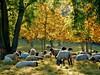 Heerlen, 18 oktober, Foto: Marina Nefkens