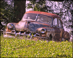Pontiac In The Meadow (Photos By Vic) Tags: pontiac rusty rust abandoned neglected old northcarolina nc 1950