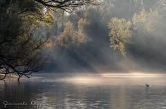 Ultime luci alle Bolle (Giancarlo Filippini) Tags: landscape magadino bolle natura luce