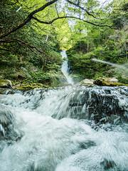 PhoTones Works #6700 (TAKUMA KIMURA) Tags: river landscape waterfall scenery natural air jp    okayama kimura       takuma  a01   photones  fudodaki