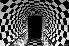 Black and White (dylannlaw) Tags: white black museum moving centre picture australia science brisbane illusion queensland fujifilm xt1