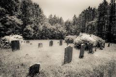 Berger Cemetery, Pittsylvania Co., VA. (Bob G. Bell) Tags: cemetery canon virginia gretna va bobbell eos40d pittsylvania toshes bergercemetery toshesroad