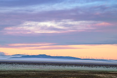 Monday (Kash Khastoui) Tags: windmill fog sunrise frost wind farm capital border australia nsw canberra act subzero kash khashayar khastoui
