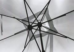 Schirm (Turikan) Tags: stand nikon fuji dev fe rodinal acros linien schirm