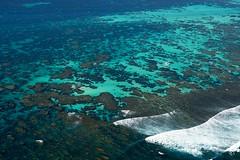 WA Coral Bay - 3109