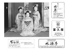 Kyo Odori 2016 042 (cdowney086) Tags: maiko miyagawacho   kyoodori wakayagi  fukutomo chikaharu  chikasaya