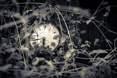 Die Zeit vergessen / Lost time (ku.keser) Tags: alt black blackwhite clock closeup nahaufnahme old schwarz schwarzweiss uhr weiss white