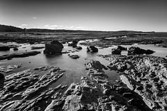 M1150825-Edit.jpg (meerecinaus) Tags: longreef beach collaroy newsouthwales australia au