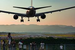 Landing (Hiro_A) Tags: itami osaka international airport airplane airline aircraft plane lamding sunset landmark d7200 nikon tamron 70300mm 70300 japan