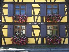 Alsace August Windows (Dan Daniels) Tags: windows shutters alsace audand nikon sirenz oldarchitecture flowers floweredwindows colorful
