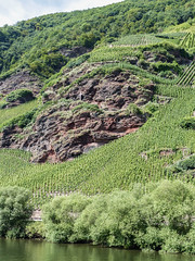 La croix blanche (CORMA) Tags: allemagne deutschland germany moselle mosel 2016 europe europa vineyard vignoble weinberg