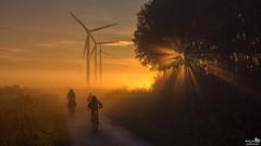 On the way to school (BraCom (Bram)) Tags: bracom sunrise zonsopkomst bicycle fiets morning ochtend mist fog sunrays zonestralen trees bomen mother child moeder kinderen windmill windturbine windmolen reed riet clouds wolken countryroad landweg herkingen goereeoverflakkee zuidholland nederland southholland netherlands holland canoneos5dmkiii widescreen canon 169 canonef24105mm bramvanbroekhoven nl explore