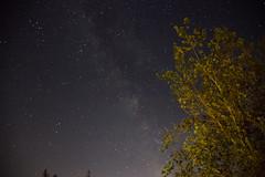 sechelt stars (johnwooding21) Tags: bc canon 5dmkii 24105mm llens longexposure canada stars