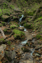 P1150119 (TallGrass-IA) Tags: edgewood iowa unitedstates us panasonic g6 1235 lumix micro43 microfourthirds waterfalls longexposure hiking outdoor nature moss