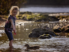 Here Ducky Ducky (mattd85) Tags: portrait backlight backlit rimlight sun autumn autumnwatch landscape laughter daughter duck lochlomand loch scotland children childrenportrait
