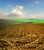 Spring (Katarina 2353) Tags: fall field landscape photography photo spring europe view image outdoor serbia valley fields agriculture vojvodina srem katarina2353 serbiainspired