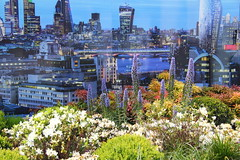 (aka Jon Spence) Tags: flowers london construction cityscape view dusk hoarding flowerbed vista riverthames development lupin cgi stamfordstreet marketingsuite oneblackfriarsroadtower