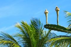 Key West (Florida) Trip, November 2014 3219Ri 4x6 (edgarandron - Busy!) Tags: keys florida keywest floridakeys higgsbeach westmartellotower keywestgardenclub