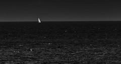 SAILING (coffee robbie) Tags: ireland sea nikon yacht sigma eire sail youghal sigma150500mm silverefexpro2 nikond5100 eochill
