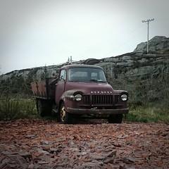 Old Bedford (stubinde) Tags: classic norway bedford lorry veteran hordaland sund tlavg veteranlorry experiaz2