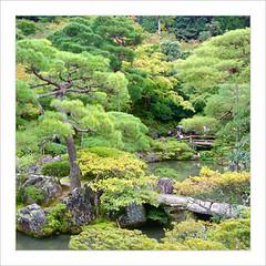 Perdus dans le jardin / Ginkaku-ji - Kyoto (PtiteArvine) Tags: japan garden kyoto jardin japon ginkakuji