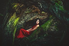 Red (lenscapkid) Tags: ohio red portrait woman tree green nature girl fairytale contrast dark hair square 50mm moss nikon dress slumber fineart longhair teen squareformat reddress brownhair creativeportrait iphoneography instagramapp alexisziemski