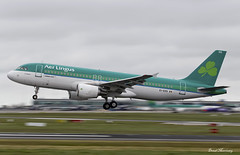 Aer Lingus A320-200 EI-EDS (birrlad) Tags: ireland dublin cloud weather airplane airport aircraft aviation airplanes landing international finals airline airbus arrival airways approach airlines panning runway shamrock dub aerlingus airliner a320 arriving a320200 a320214 eieds