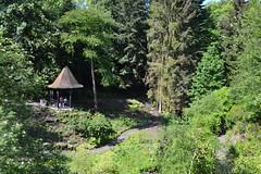 Dunfermline (Beachcombing Bumpkin) Tags: park uk summer hot forest scotland woods day fife gazebo glen fir folly dunfermline