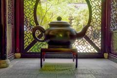 the mountain tea (romani.stefano10) Tags: china city travel mountain holiday green nature colors beautiful geotagged photo foto photographer tea photos sony ngc natura national hangzhou oriental geographic photograpy a6000