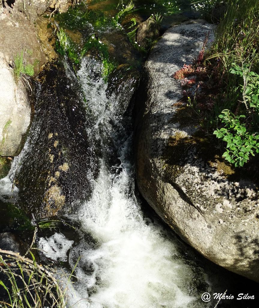Águas Frias (Chaves) - ... água fria ... corrente ...