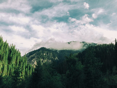 Wonderful Nature (rm005759) Tags: vsco vscofilm summer travel nature mountains forest trees sky clouds pine spruce shotoniphone