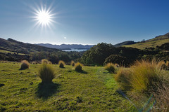 Sun over Orton Bradley Park (Tdyy) Tags: canterbury christchurch d7200 darktable dslr hike hiking landscape linux newzealand nikon nz outdoor sun travel ubuntu sunstar