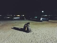 Ci sono abbracci urgenti che non puoi rimandare. (Giovanni Convertino (shako)) Tags: hug love crazy amore couple parking summer hugs awesome amazing