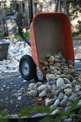 Unfinished business (Dan The Hutt) Tags: minoltamdrokkorx50mmf17 unprocessed pixelpeeper wheelbarrow stones
