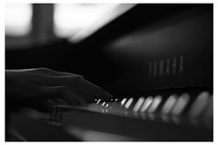 Spider (prathan chorruangsak) Tags: red piano music song paly hand monochrome feel moment player dark