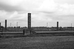 20130916Auswitch II Birkenau09 (J.A.B.1985) Tags: auswitch poland polonia iiww worldwar iigm guerramundial holocaust holocausto soah