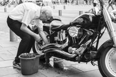 Cleaning the Dream (thegrolffalo) Tags: harleydavidson motorbike monochrome blackwhte elderly cleaning bucket chrome