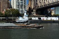 Tugboat & Barges 2 (Roosevelt Island/NYC) (chedpics) Tags: newyork eastriver rooseveltisland