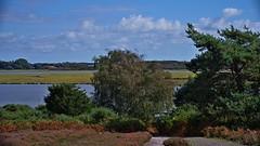 1331-10L (Lozarithm) Tags: arne rspb dorset landscape estuary pooleharbour k1 55300 hdpda55300mmf458edwr
